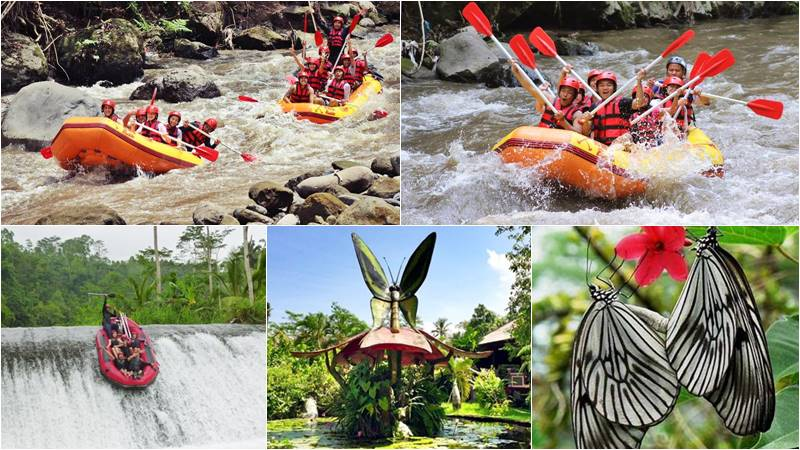 Bali Rafting + Butterfly Park Tour 1