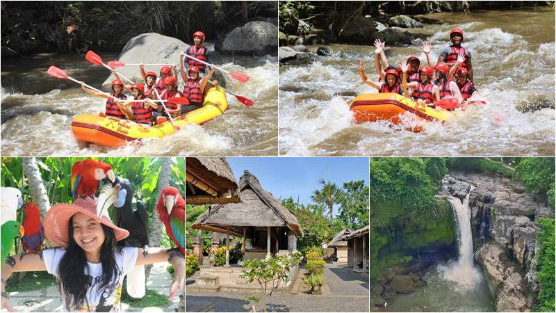 Bali Rafting + Bali Bird Park + Waterfall Tour 1