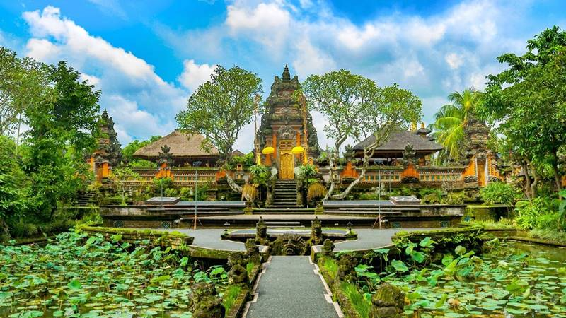 Top 5 Things to Do in Ubud, Bali 3